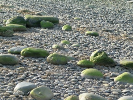 Greens rocks near sun down - Rennie Lovell