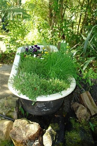 Herbal Bath - Photo by Margaret Low