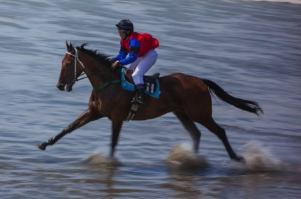 <p>Castle Point Beach Races - Saturday 7 March 2015 - Photographer Fiona Foxhall (c)</p>