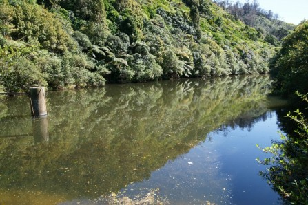 <p>Reservoir - on Colonial Knob track near Spicer Botanical Park.</p>