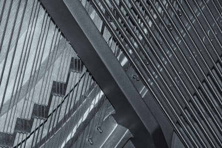 Title: Strung out (inside my piano).     Placed 2nd.     Photography by Christine Jacobson.           Judge's comments: The composition has been well considered with this graphic black and white image. Focus sharp throughout