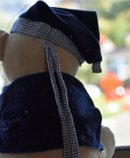 Title: Our World, Judge's comments: (Like us all he watches everyone walking by and waves.) An alternative fresh view looking at the back of the teddy, although I would have liked to see a little more of the outside. The blurred colours look interesting.