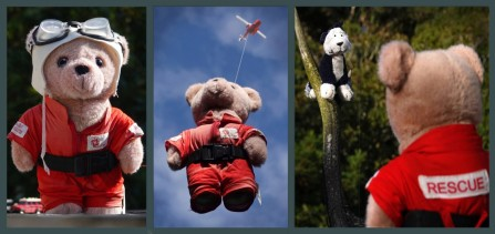 Title: Life Flight Ted to the Rescue, 2nd, Photographer: Wayne Kelsall, Judge's comments: Another really good story. Why don't you put it in the Triptych competition? It would be very likely to get accepted as it's very relevant. No promises though as I am not judging it!