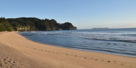 Title: Coromandel Beach, Judge's Comments: The footsteps are a nice lead in line, but then take us out of frame. Also the horizon line is sloping very much to the left. The light is good.