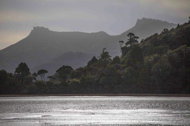 Untouched Land - Wanganui Inlet, Golden Bay, by Destina Munro