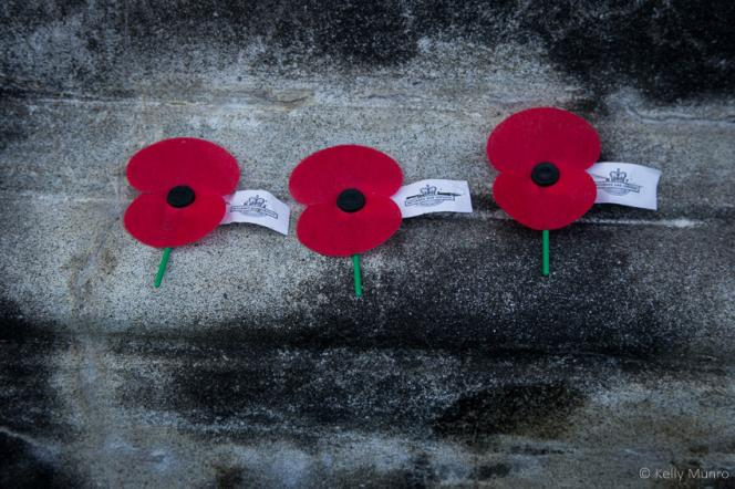 ANZAC Poppies - Photography by Kelly Munro