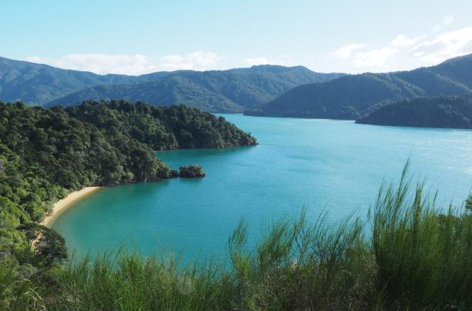 Queen Charlotte Sound [by Deb]